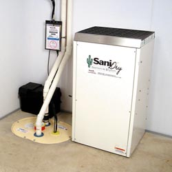 An ENERGY STAR® Rated basement dehumidifier installed in a home in Springfield