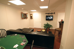 Man cave in Springfield basement