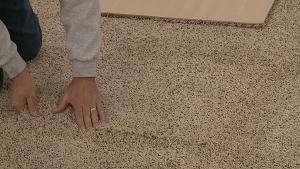 basement flooring carpet. Pro Comfort Carpeting Installation Basement Flooring Carpet