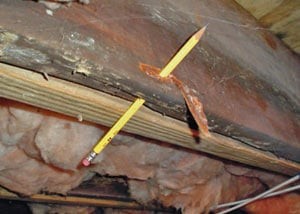 Destroyed crawl space structural wood in Collinsville